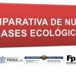 Proyecto ECOgas