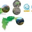 Reforestaciones realizadas por Eurofred